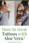 Can Aloe Vera help with Tattos? Yes, And this is Why! Thumbnail