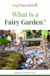Fairy gardening: How Can You Make One? Free Guideline for Beginners! Thumbnail